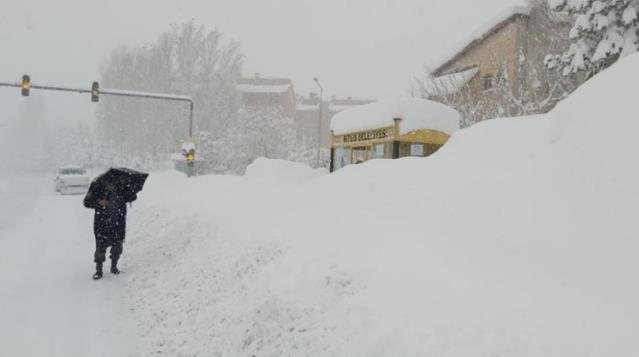 Bitlis'te kar yağışı kenti esir aldı! 290 köy yolu kapandı, evler, duraklar ve tabelalar kayboldu