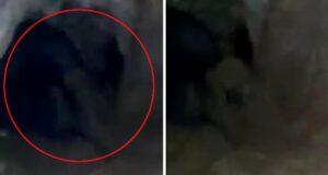 Vatandaşlar görüntüleri şaşkınlıkla izledi! Mağaradaki 'Esrarengiz varlık' kamerada