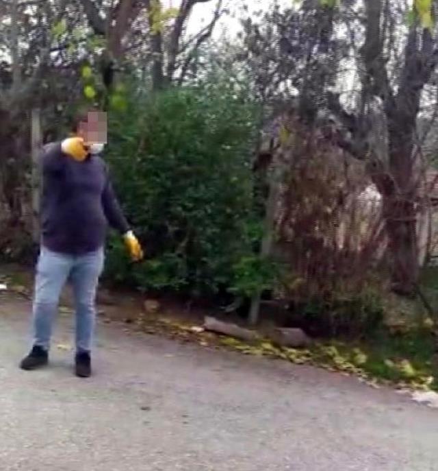 Yavru köpekleri annelerinden ayıran belediye görevlilerini uyaran genç kız saldırıya uğradı