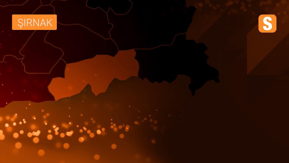 Şırnak'taki Cudi Dağı havai fişeklerle aydınlandı