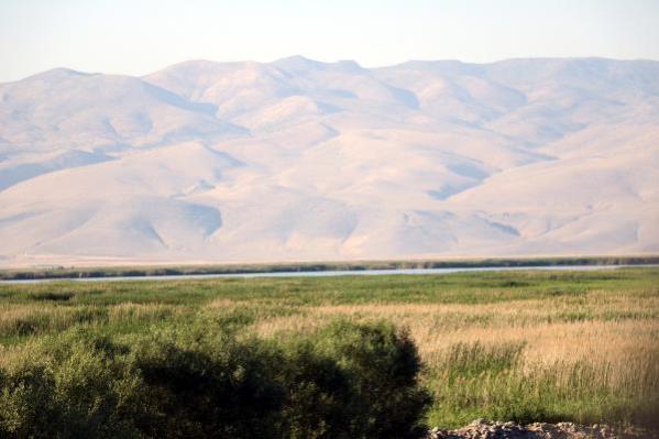 Son dakika haberi! Veysel Eroğlu: Burdur Gölü'nün kurtarılması için gerekli bütün tedbirleri alacağız (2)