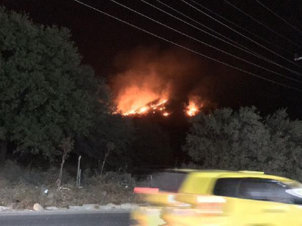 Son dakika! Muğla'da otluk ve sazlık alandaki yangın korkuttu