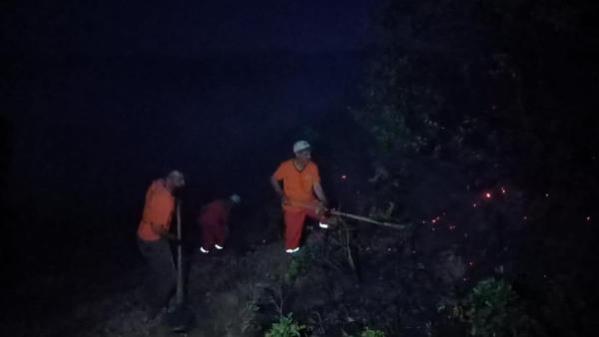 Bingöl'de çıkan orman yangını kısa sürede söndürüldü