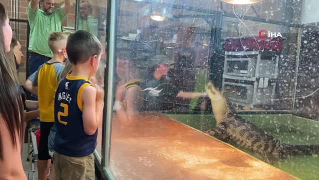 Timsah, çocukların gözü önünde hayvan terbiyecisinin elini ısırdı