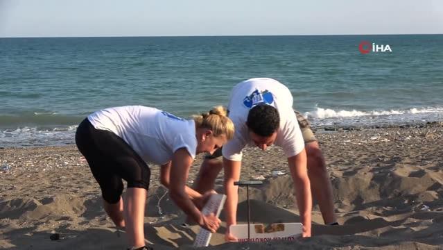 Yavru kaplumbağalar denizle buluştu